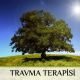 Travma Terapisi